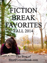 small fiction break favs